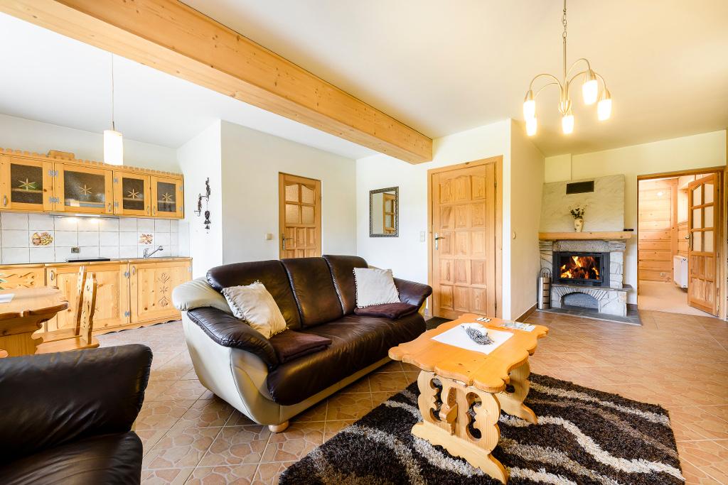 salon z kominkiem na drewno - apartament nr 1 Forster House Zakopane