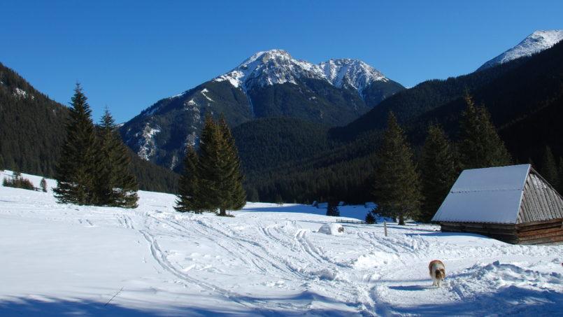 Tatry zimą – najlepsze miejsca wokół Zakopanego